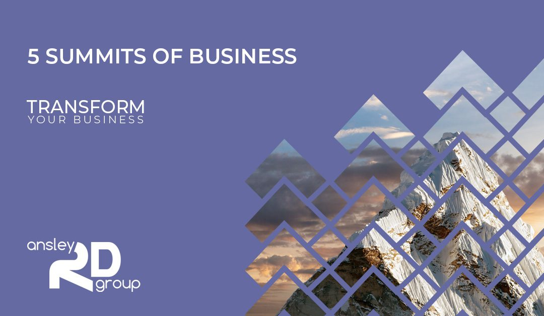5 Summits of Business